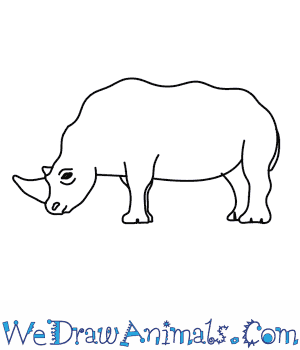 How to Draw a Rhino in 9 Easy Steps