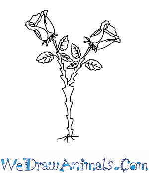 How to Draw a Rose Tree in 5 Easy Steps