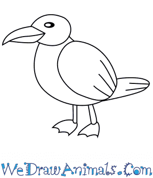 How to Draw a Seagull For Kids in 6 Easy Steps