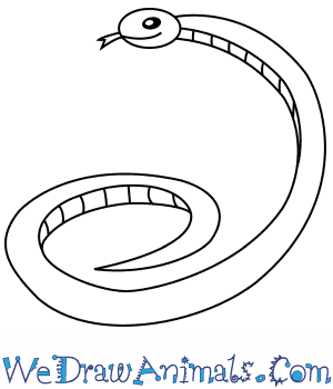 How to Draw a Snake For Kids in 4 Easy Steps