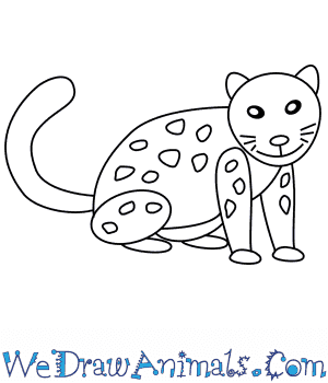 How to Draw a Snow Leopard For Kids in 6 Easy Steps