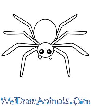 How to Draw a Spider For Kids in 4 Easy Steps