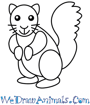How to Draw a Squirrel For Kids in 6 Easy Steps