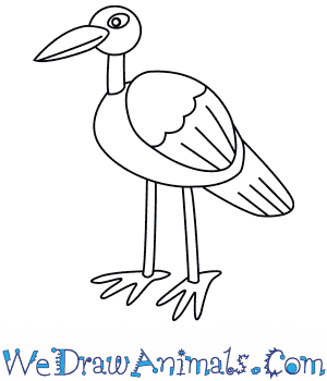 How to Draw a Stork For Kids in 6 Easy Steps
