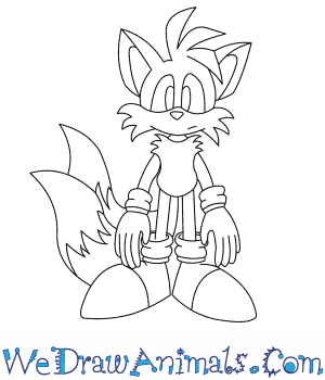 How To Draw Tails The Fox From Sonic The Hedgehog