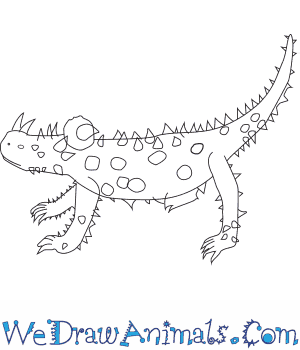 How to Draw a Thorny Devil in 8 Easy Steps