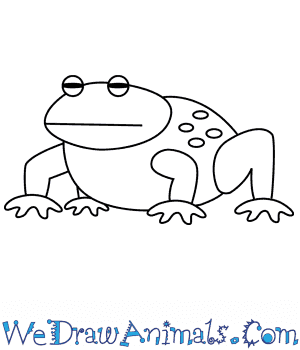 How to Draw a Toad For Kids in 6 Easy Steps