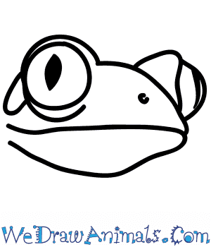 How to Draw a Tree Frog Face in 4 Easy Steps