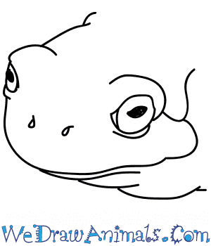 How to Draw a Tree Frog Head in 5 Easy Steps