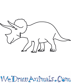 How to Draw a Triceratops in 6 Easy Steps