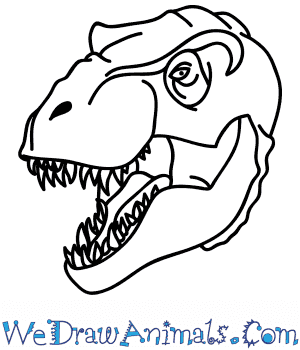 How to Draw a Tyrannosaurus Face in 5 Easy Steps