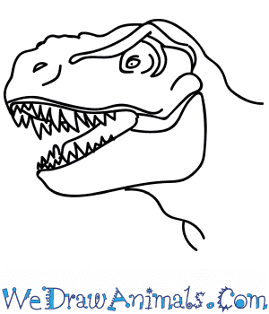 How to Draw a Tyrannosaurus Head in 11 Easy Steps