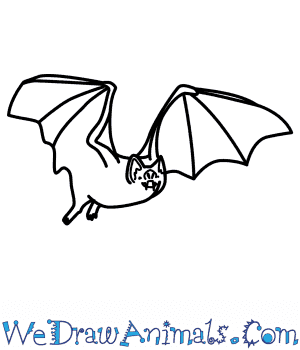 How To Draw A Vampire Bat