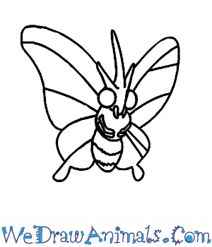 How to Draw  Venomoth in 5 Easy Steps