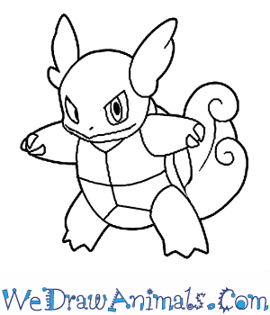 How to Draw  Wartortle in 7 Easy Steps