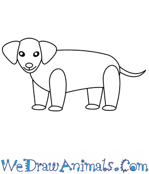How to Draw a Wiener Dog For Kids in 6 Easy Steps