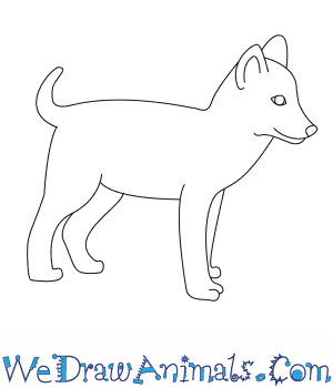 How to Draw a Wolf Pup in 6 Easy Steps
