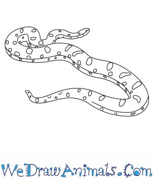 How To Draw A Yellow Anaconda