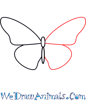 How to draw a BUTTERFLY step by step - YouTube