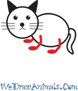 How To Draw A Simple Cat For Kids