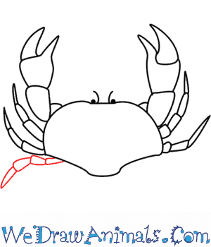 How to Draw a Crab - Quick Step-by-Step Tutorial - Step 9