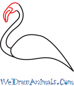 How to Draw a Flamingo - Quick Step-by-Step Tutorial - Step 3