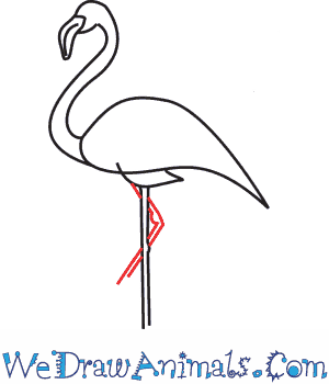 How to Draw a Flamingo - Quick Step-by-Step Tutorial - Step 6