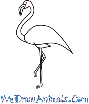 How to Draw a Flamingo - Quick Step-by-Step Tutorial - Step 8