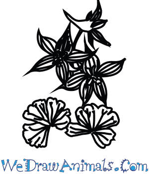 How to Draw a Larkspur Flower