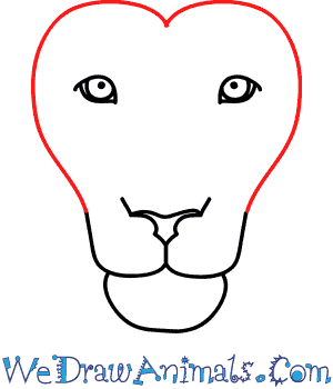 How To Draw A Lion Face The lion head symbol should be used in good taste and treated with dignity and respect. how to draw a lion face