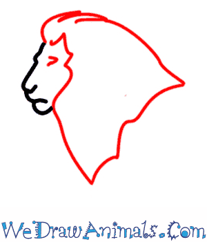How to Draw a Lion - Quick Step-by-Step Tutorial - Step 2