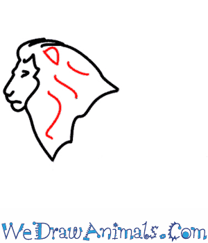 How to Draw a Lion - Quick Step-by-Step Tutorial - Step 3