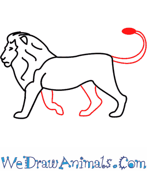 How to Draw a Lion - Quick Step-by-Step Tutorial - Step 6