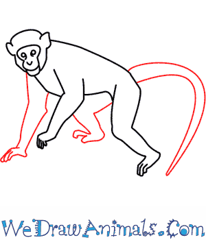 How to Draw a Monkey - Quick Step-by-Step Tutorial - Step 7