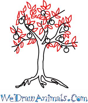 How to Draw an Orange Tree