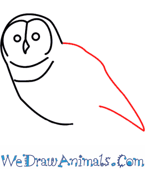 How to Draw an Owl - Quick Step-by-Step Tutorial - Step 4