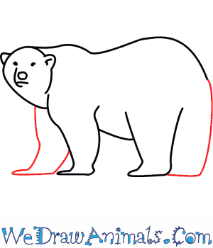 How to Draw a Polar Bear - Quick Step-by-Step Tutorial - Step 8