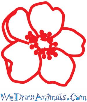 How to draw a poppy flower print tutorial mightylinksfo