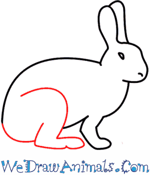 easy rabbit drawing