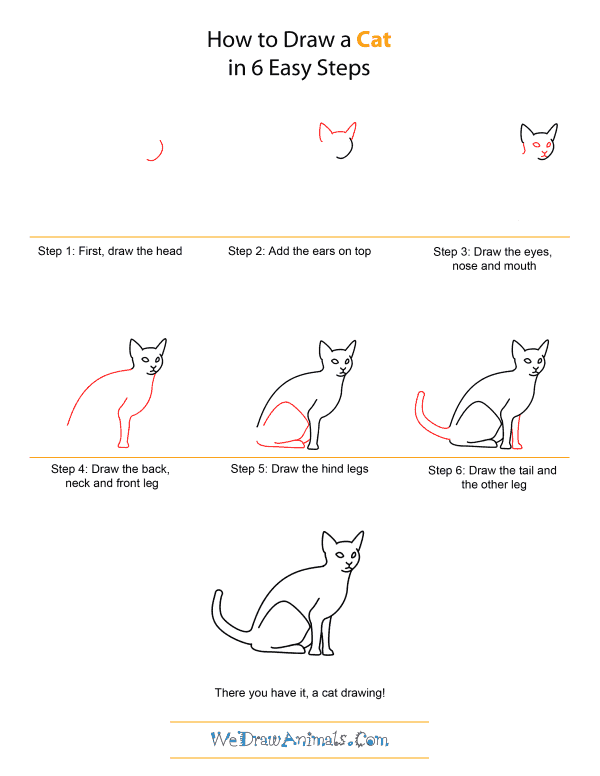 How to draw a cat quick step by step tutorial