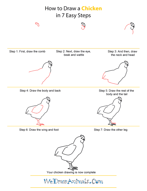 how to draw a chicken quick step by step tutorial
