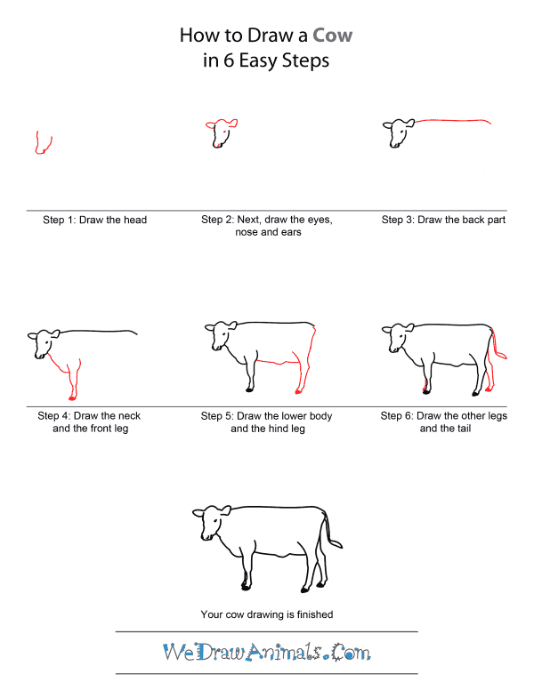 How to Draw A Cow - Quick Step-by-Step Tutorial