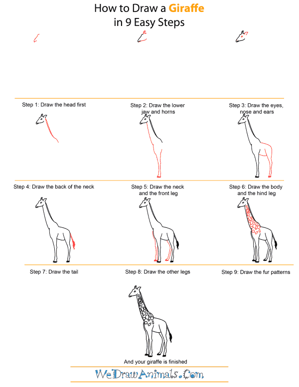 How to Draw A Giraffe - Quick Step-by-Step Tutorial