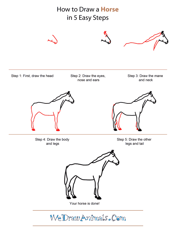How to draw a horse quick step by step tutorial
