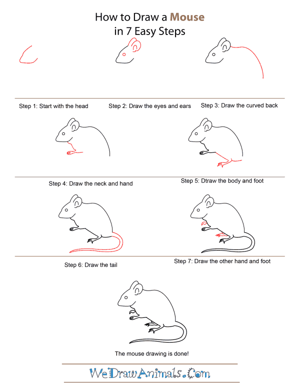 How to Draw A Mouse - Quick Step-by-Step Tutorial