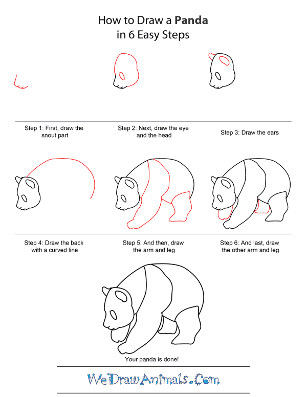 How to Draw A Panda - Quick Step-by-Step Tutorial