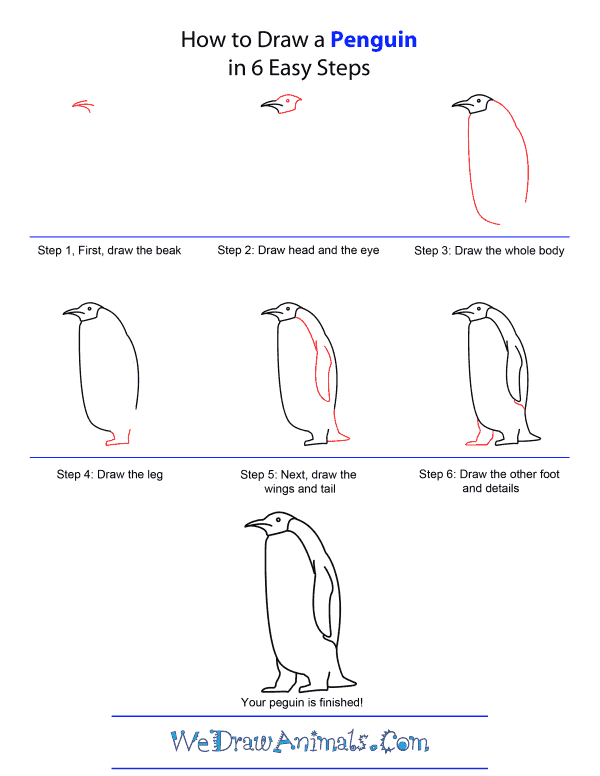 How to Draw A Penguin - Quick Step-by-Step Tutorial