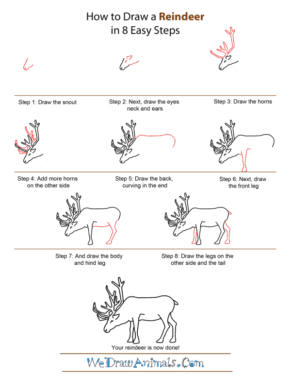How to draw a reindeer quick step by step tutorial