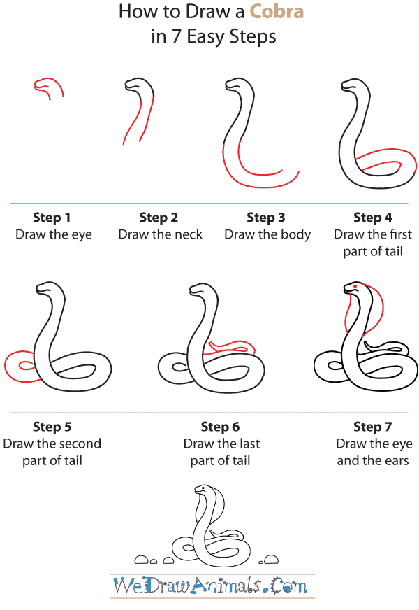 How To Draw A Cobra - Step-by-Step Tutorial