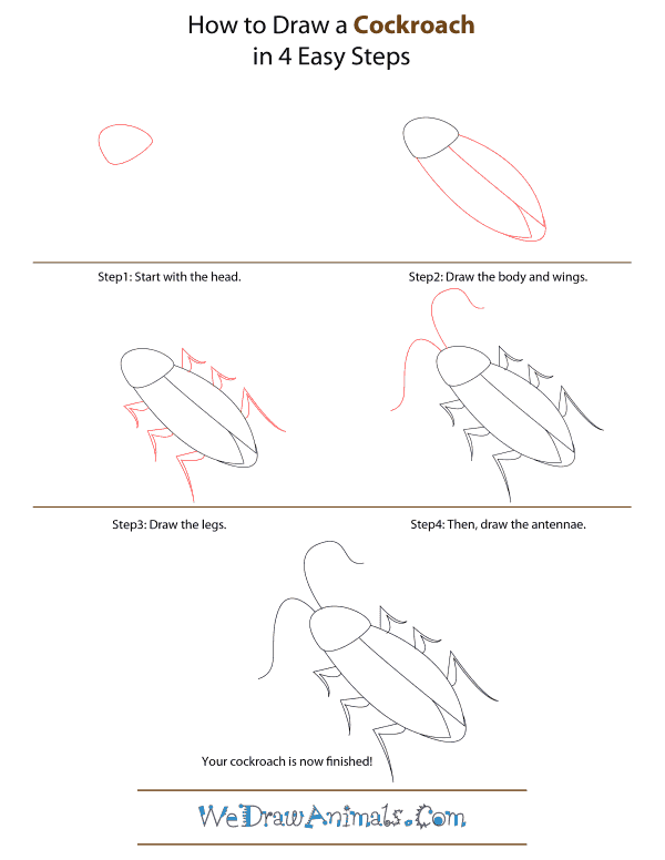 How To Draw A Cockroach - Step-by-Step Tutorial